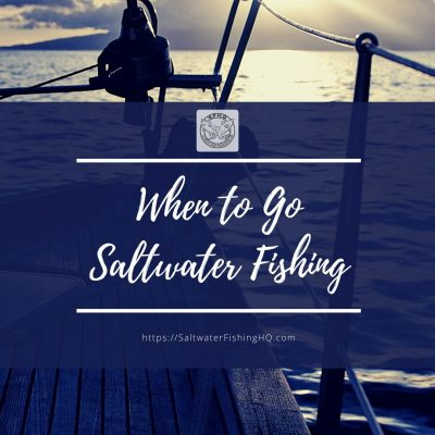 When to Go Saltwater Fishing