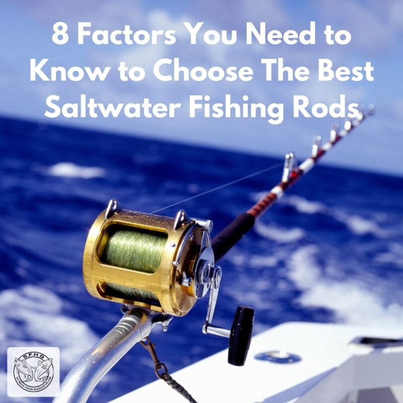 8 Factors You Need to Know to Choose The Best Saltwater Fishing Rods