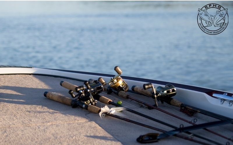 The Power in a Saltwater Fishing Rod