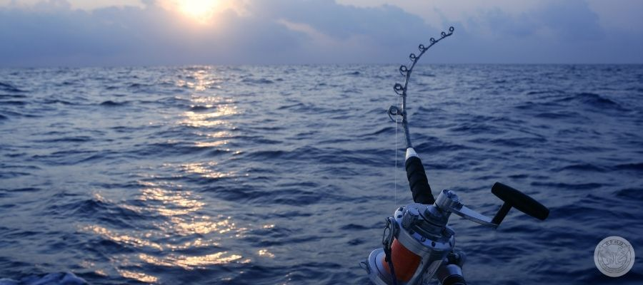 ocean, rising sun, with fishing rod in frame.